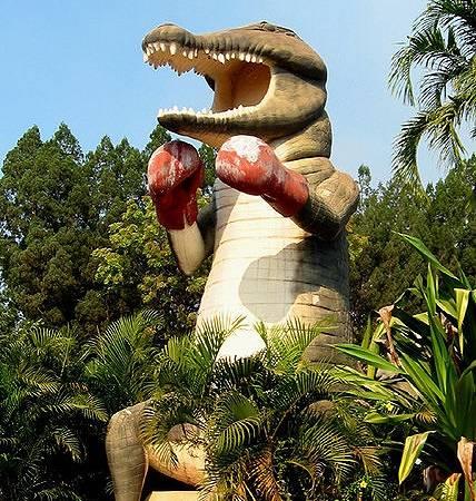 Big Boxing Croc