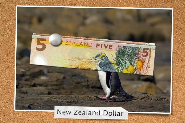 Penguin + dollar