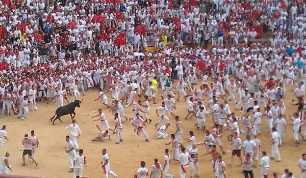 Bull Ring Pamplona