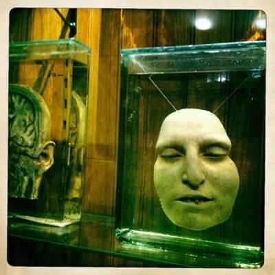 Worlds Weirdest Museums