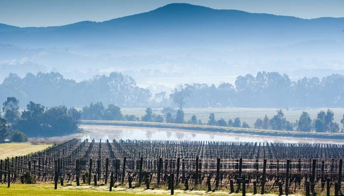 Yarra Valley in Melbourne is a favourite with wine lovers