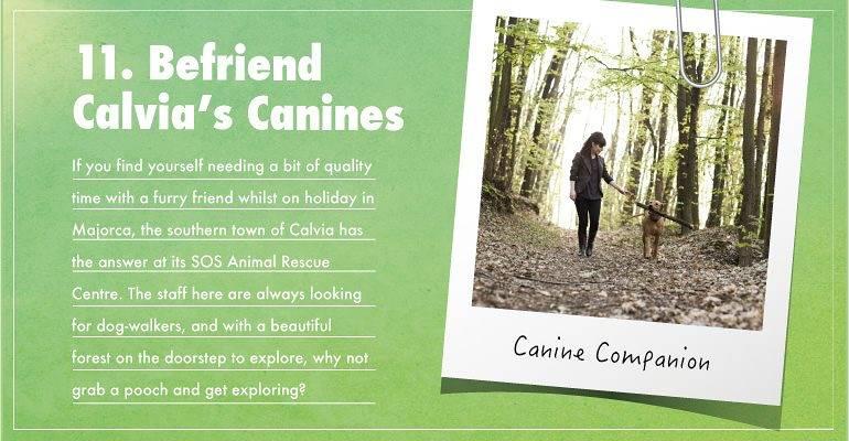 Befriend Calvia's Canines