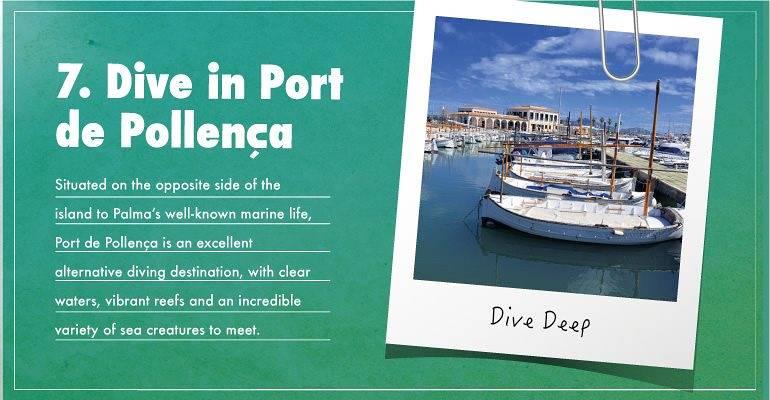 Dive in Port de Pollensa