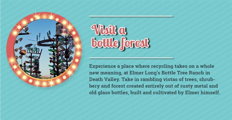 Visit a Bottle Forest