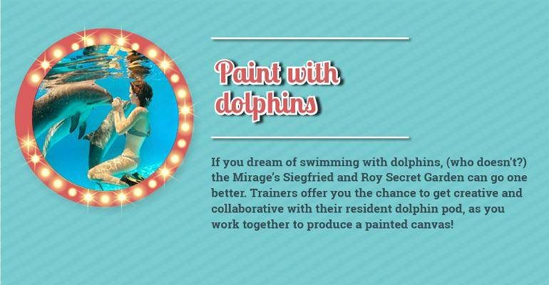 Paint with Dolphins