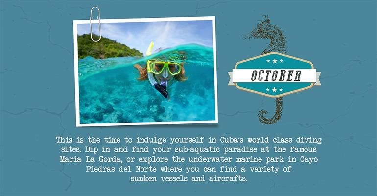 October - diving