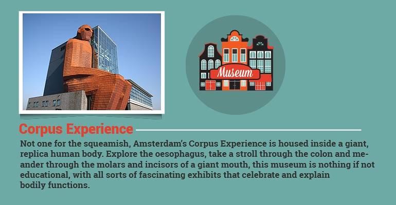Corpus Experience
