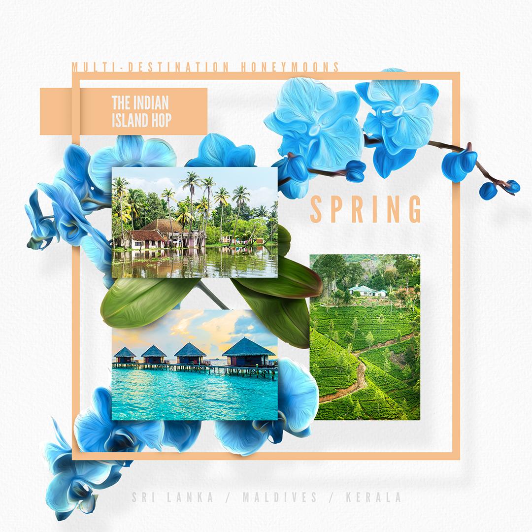 1_HoneyTrav_Spring_L