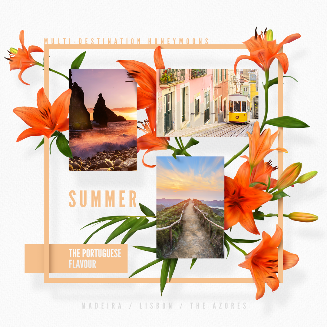 8_HoneyTrav_Summer_S