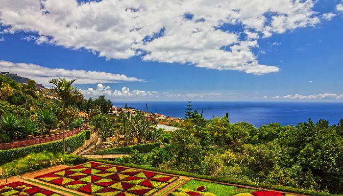 picture of Funchal