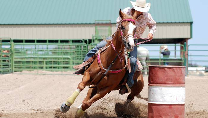picture of a cowgirl