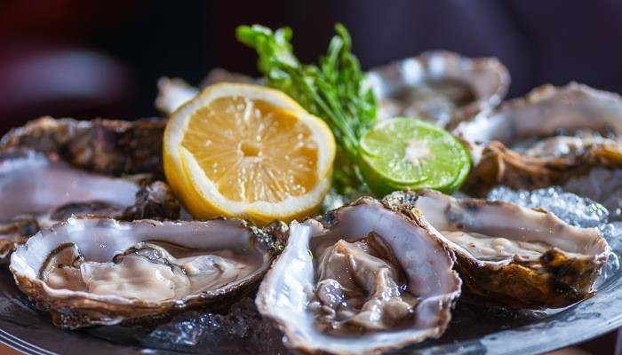 picture of oysters