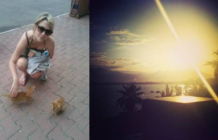 cats and sunset turkey