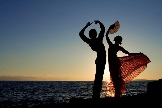 flamenco on the rocks